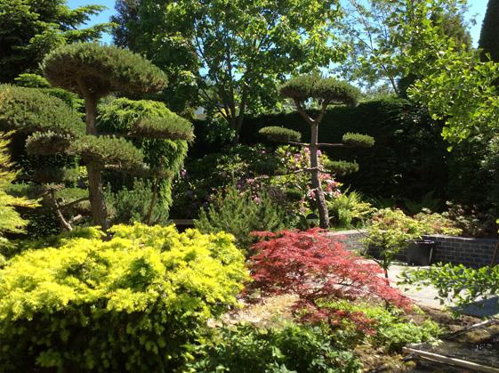 Ontwerp-Japanse-tuin